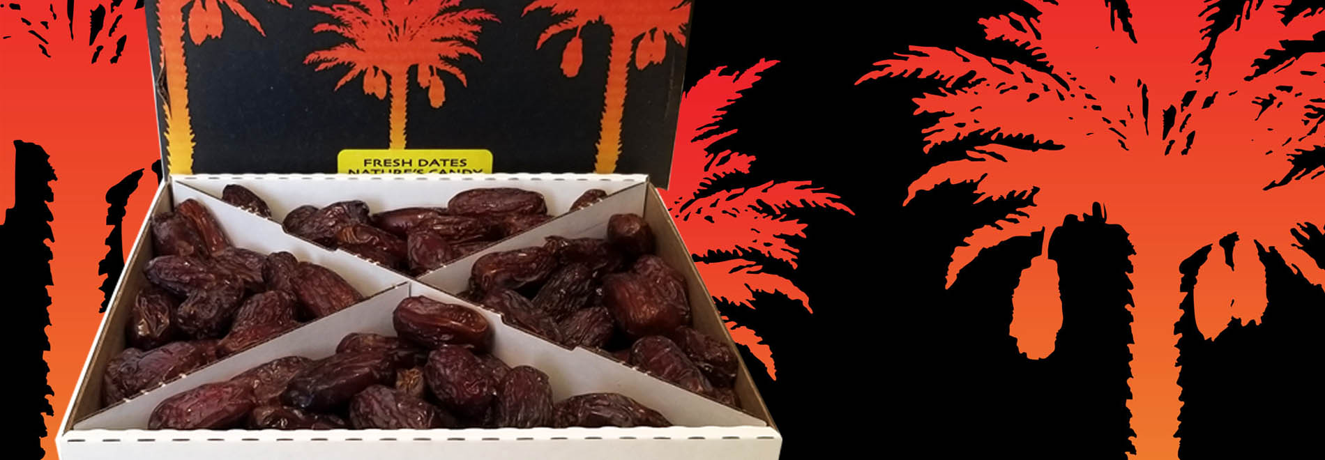 Dateland Grows the Freshest & Best Tasting Dates Available