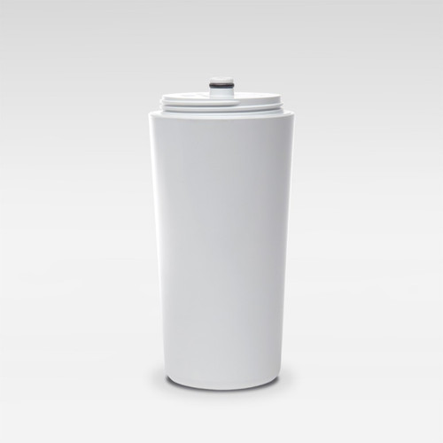 Austin Springs Premium Shower Filter Replacement
