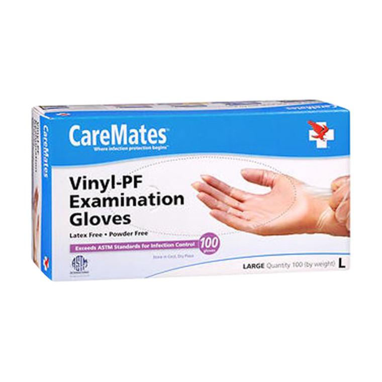 CareMates Vinyl Powder Free Examination Gloves Large, 100 Ea