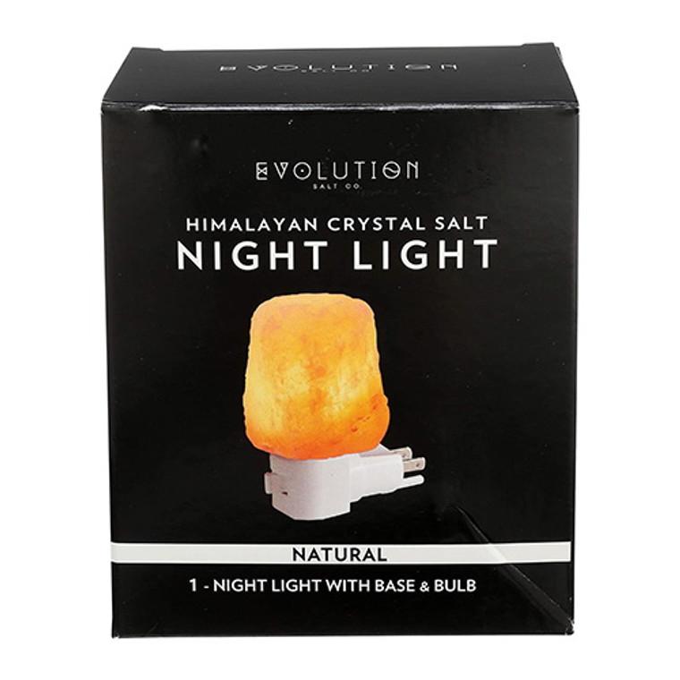 Evolution Natural Salt Night Light with Plug and Bulb, 1 Ea