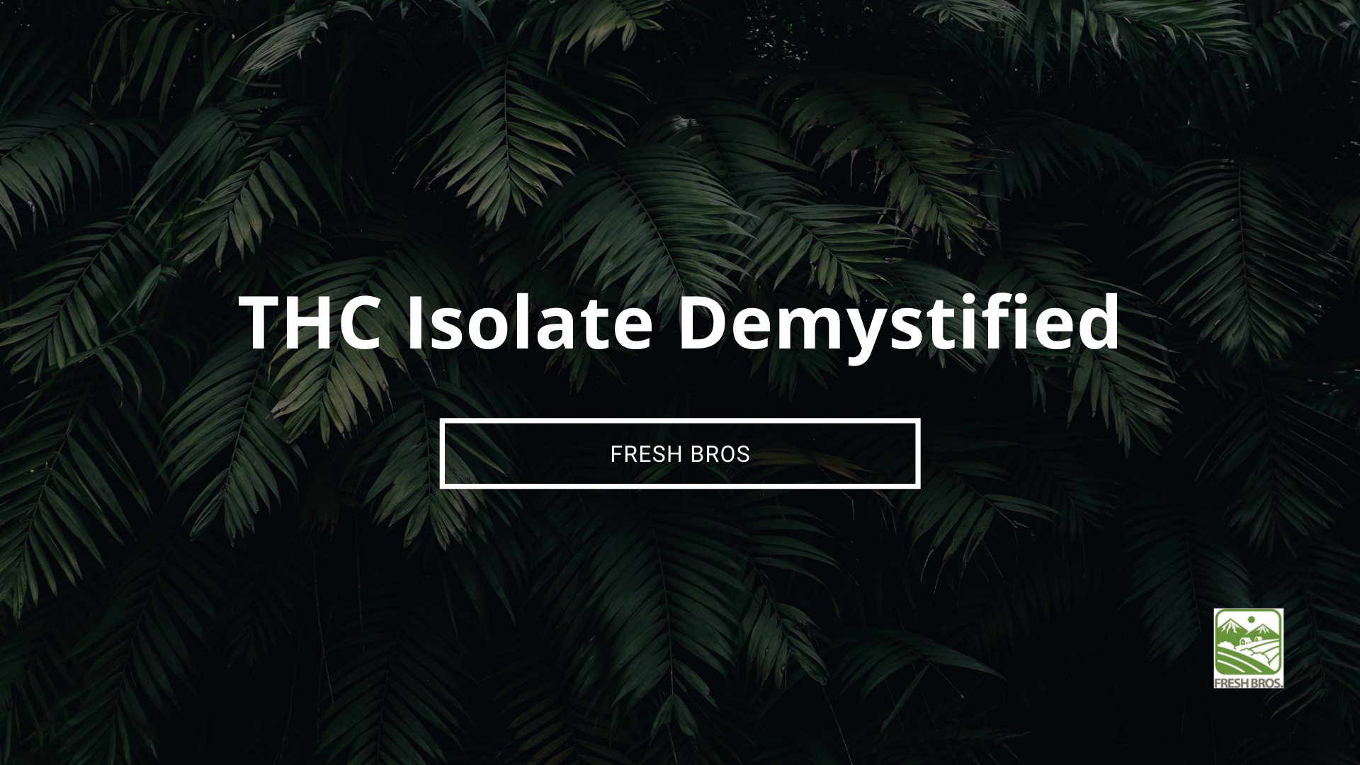 THC Isolate: One of the Most Potent Isolates in the Cannabis World