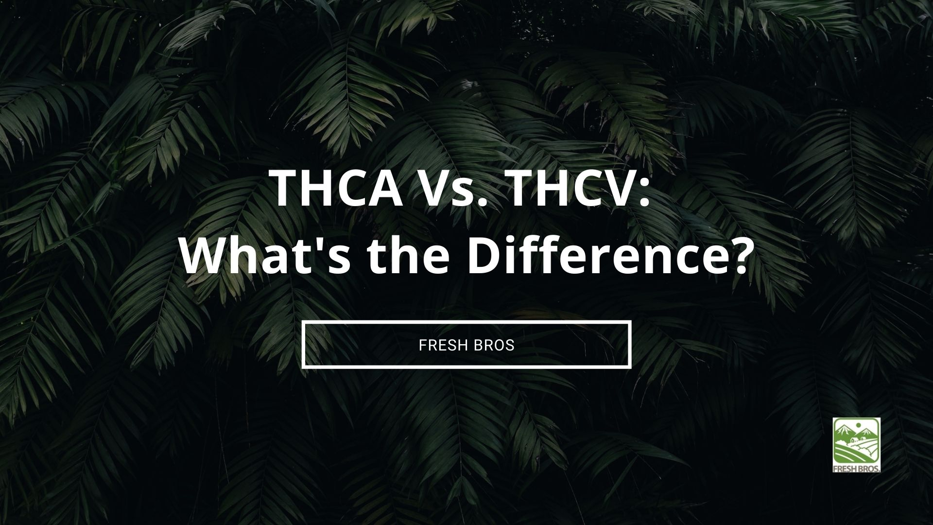 THCA vs THCV: What's The Difference Between Cannabinoids THCA and THCV?
