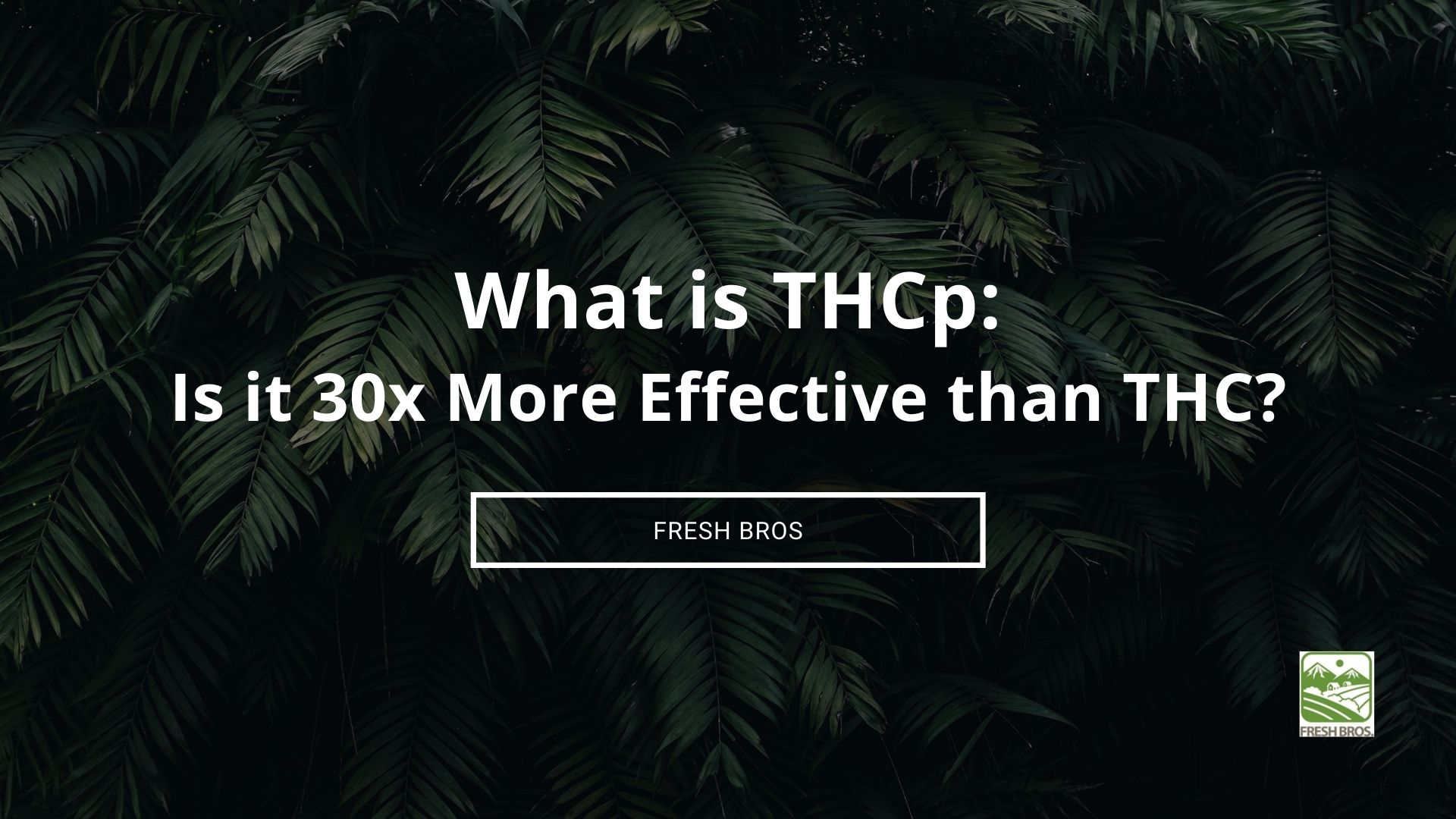 What is THCp: Is It Really 30x More Effective Than THC?