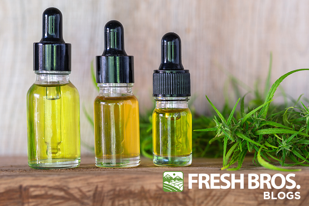​ALL THE CBD OILS EXPLAINED