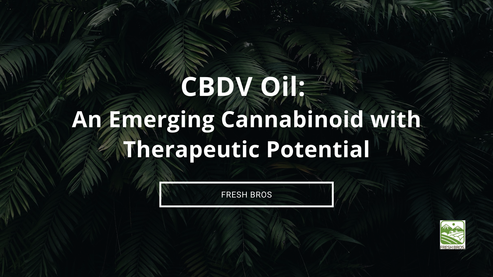 CBDV Oil: An Emerging Cannabinoid with Therapeutic Potential