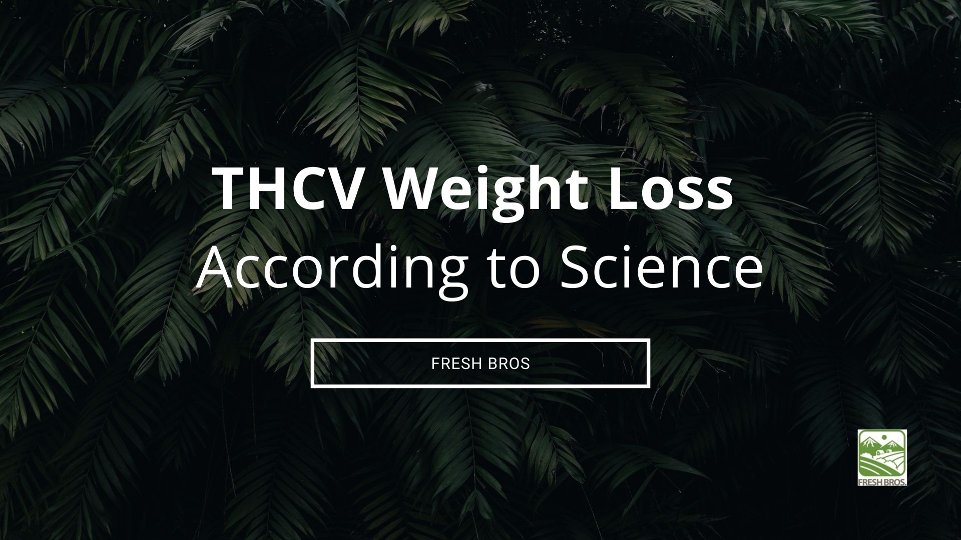 THCV Weight Loss: Get to Know the Diet Weed