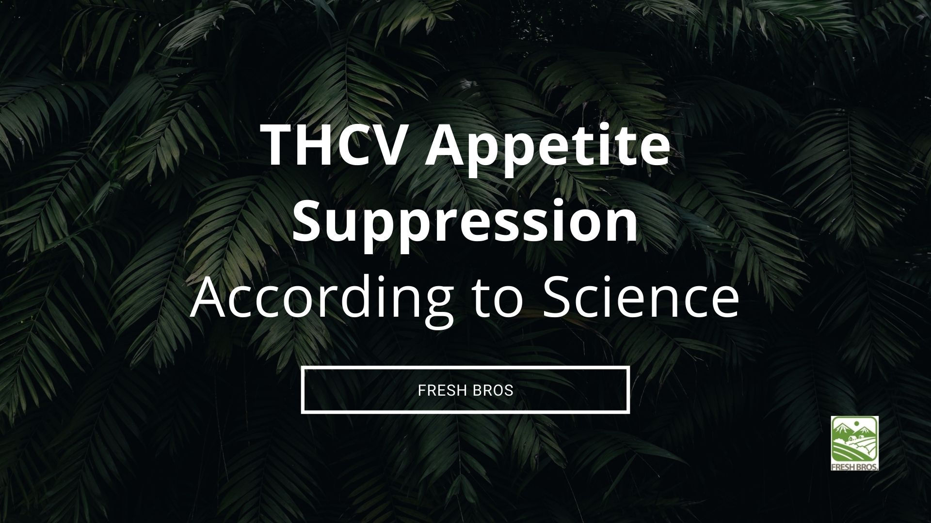 THCV Appetite Suppression - Does it Work?