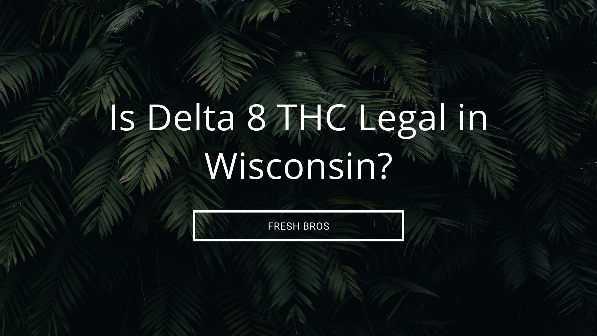 Is Delta 8 THC Legal in Wisconsin?