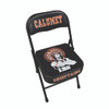 Team Sideline Chairs