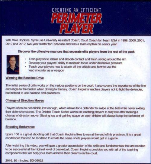 (Rental)-Creating An Efficient Perimeter Player