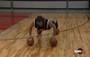 Ganon Baker basketball pushups