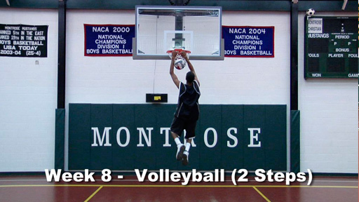 MVP Vertical Jump System to Increase Jump