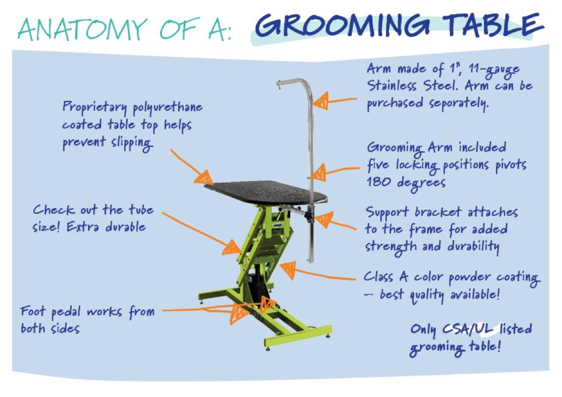 anatomy-grooming-table.jpg