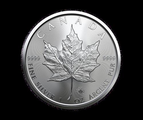 1oz Silver Maple Leaf Coin