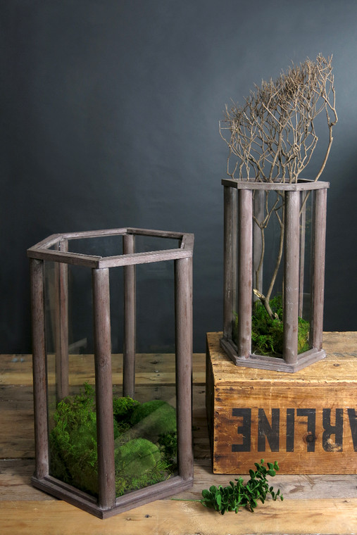 Set of Two Wood and Glass Terrariums
