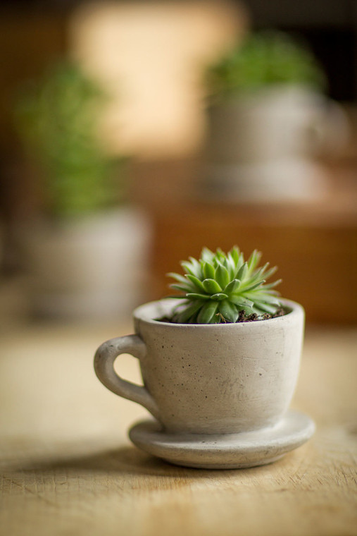 Tiny Cement Tea Cup with Attached Saucer