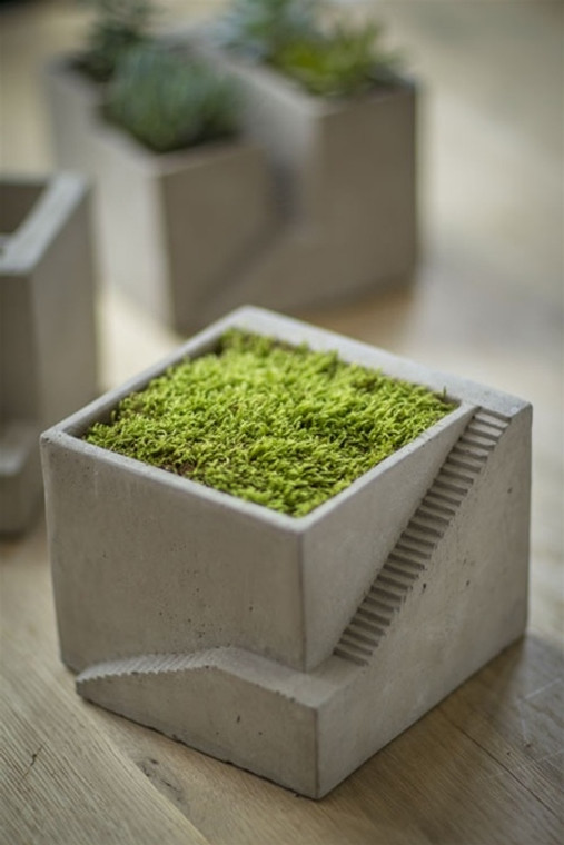 Cement Architectural  Cube Planter I