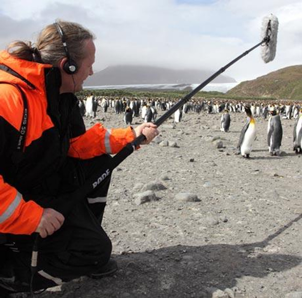 RODE micro boom pole microbp miking penguins