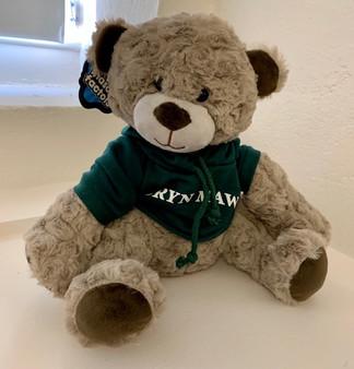 Bear Wilson Green Hoodie