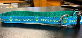 Dog Collar S Mawrtian