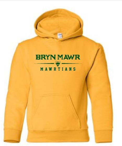 YOUTH Hoodie BRYN MAWR MAWRTIANS