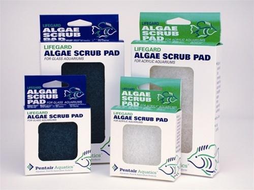 """Pentair Acrylic Algae Pad 3""""x3"""""""