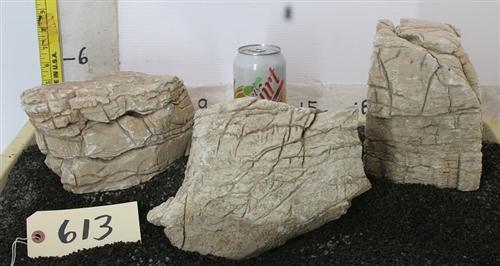 Polished Petrified wood Rock - rock-pp613