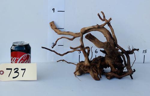 Spider Wood - DW737