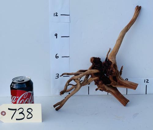 Spider Wood - DW738