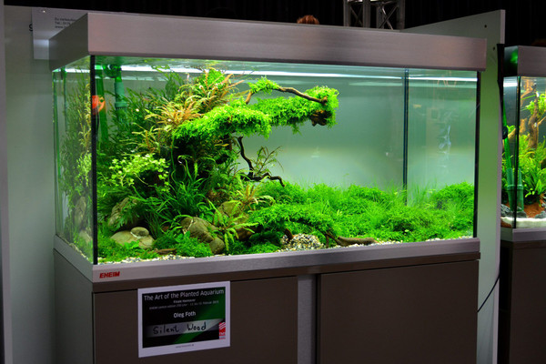 120+ Plant Assortment