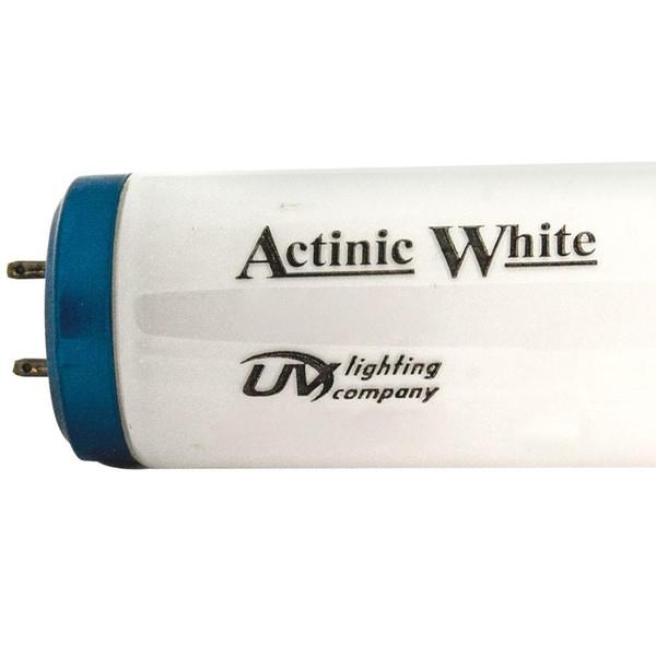 """48"""" 40 Watt Actinic White 12K T-12 Lamp"""