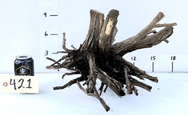 Alborz Wood - DW421