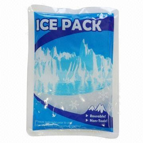 ICE PACK (for shipping during HOT weather conditions)(best 99 cents you ever spent)
