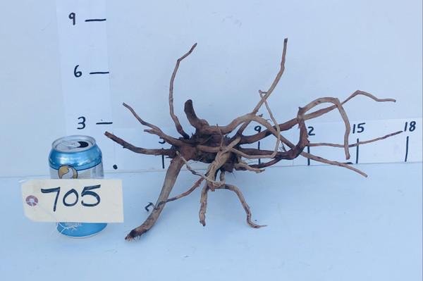 Spider Wood - DW705