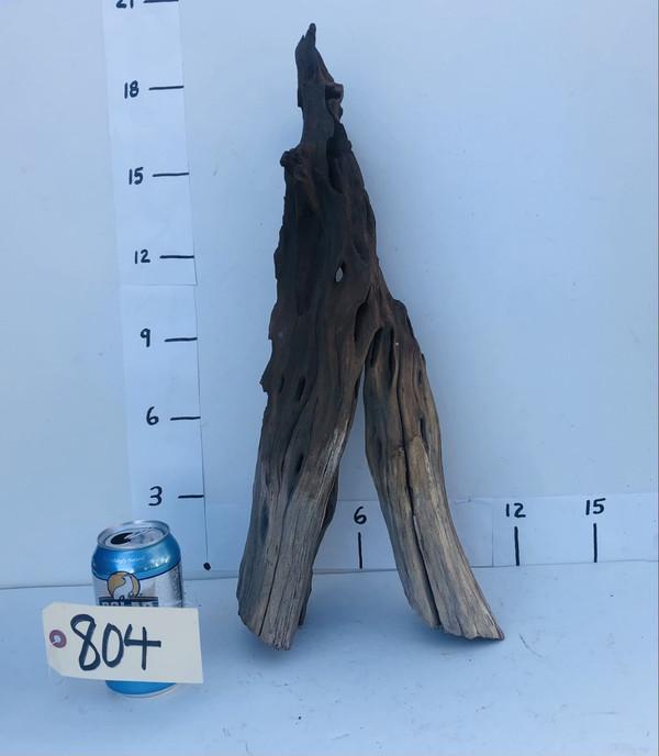 Manzanita Stump - 804