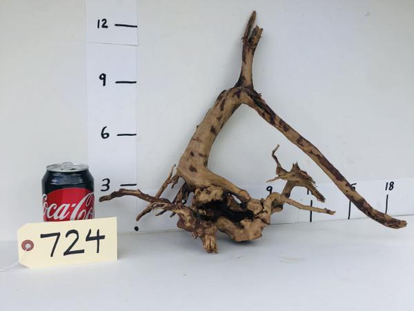 Spider Wood - DW724
