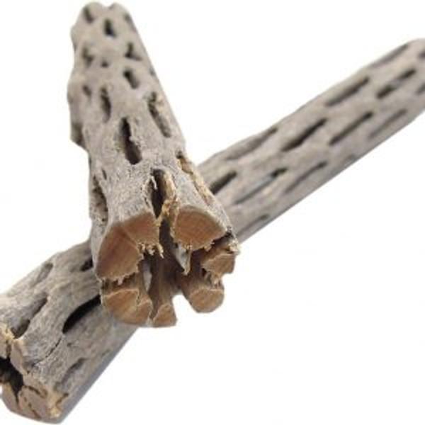 Cholla cactus wood ( 3 pieces per order, 6 inch long)+aquariumplants.com