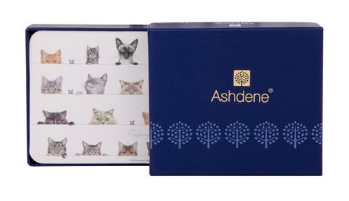 Ashdene Peeping Felines Collection - Coasters - Set of 6 (AD 518912)