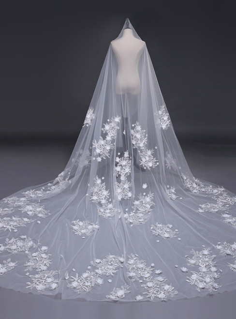 In Stock:Ship in 48 Hours Long Veils Tulle Lace Wedding Veils