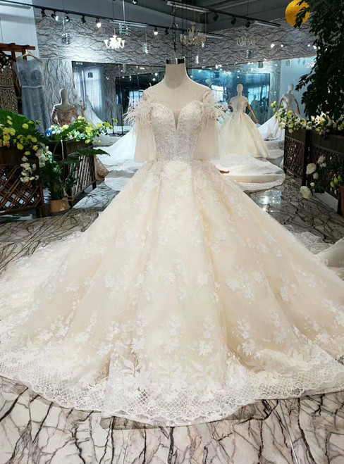 Ball Gown Tulle Lace Appliques Off the Shoulder Wedding Dress With Feather