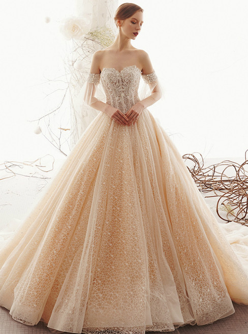 Champagne Tulle Lace Off the Shoulder Appliques Corset Wedding Dress With Train
