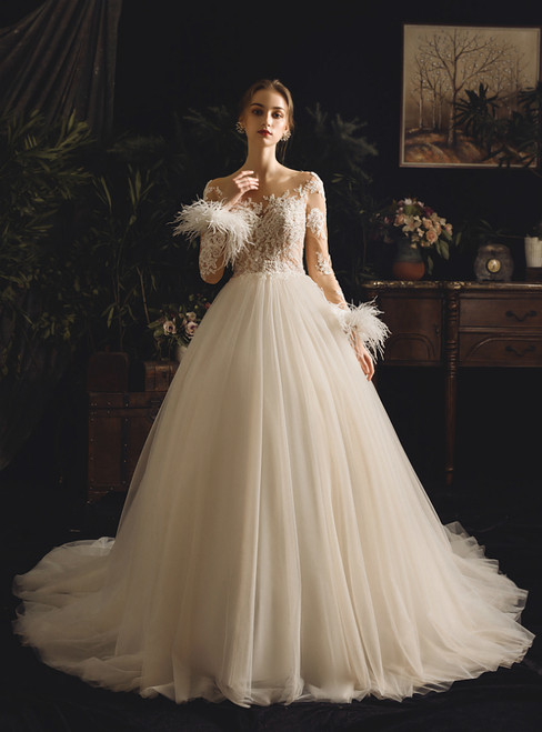 Champagne Tulle Appliques Bateau Long Sleeve With Feather Wedding Dress