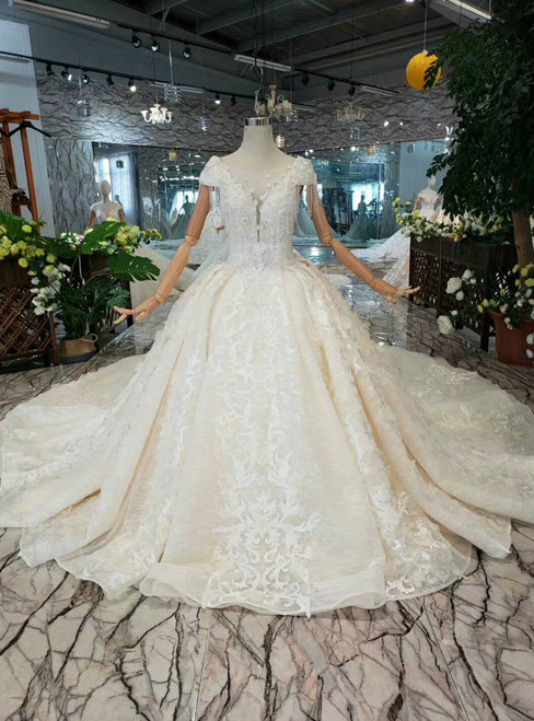 Champagne Ball Gown Tulle Lace Appliques Cap Sleeve Backless Wedding Dress