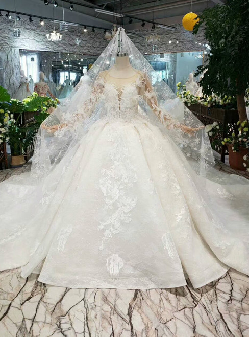 Champagne Ball Gown Tulle Appliques Long Sleeve Wedding Dress With Feather