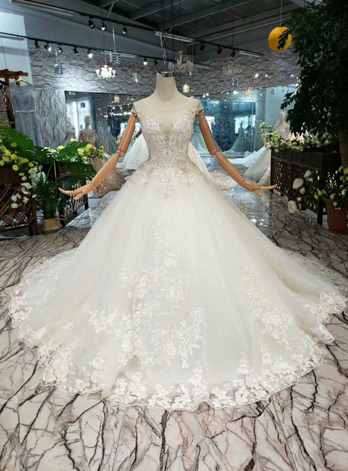 Light Champagne Ball Gown Tulle Backless Appliques Beading Wedding Dress