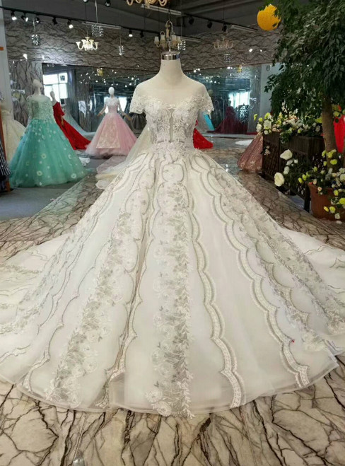 Champagne Tulle Ball Gown Cap Sleeve Backless Gray Appliques Wedding Dress