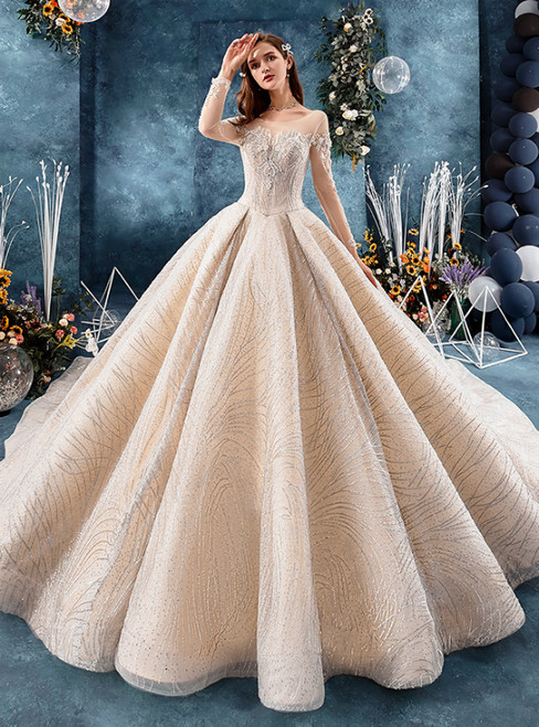 Champagne Ball Gown Tulle Long Sleeve Appliques Wedding Dress With Beading
