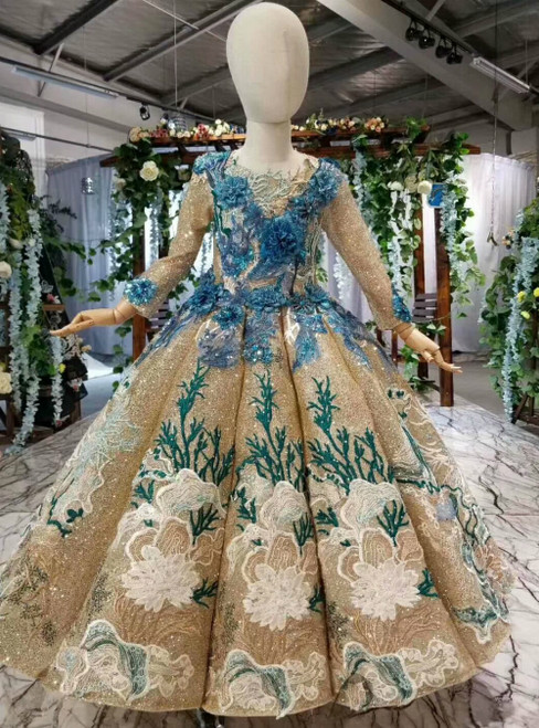 Gold Ball Gown Sequins Long Sleeve Blue 3D Appliques Flower Girl Dress