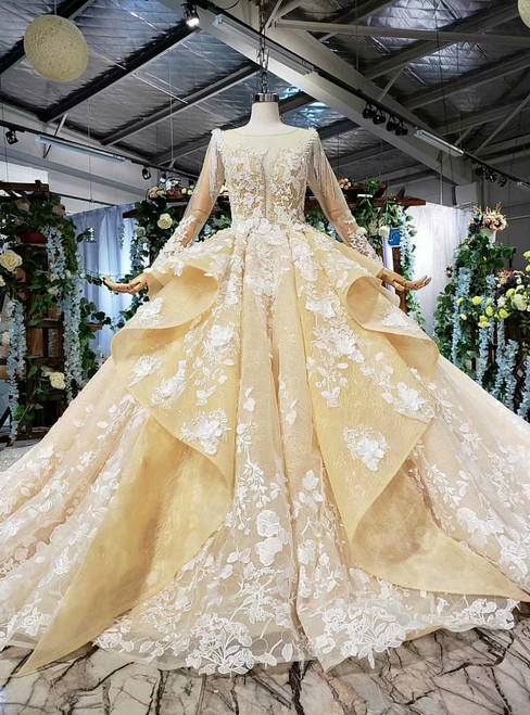 Dark Champagne Ball Gown Tulle Long Sleeve Appliques Wedding Dress With Long Train