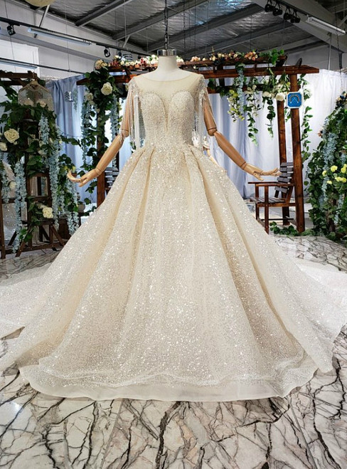 Champagne Ball Gown Tulle Sequins Backless Beading Sequins Wedding Dress